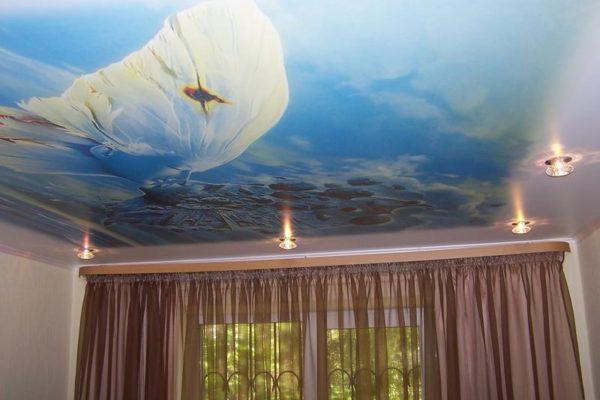 натяжной потолок с картиной