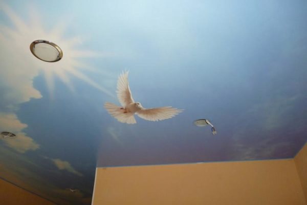 натяжной потолок с голубем