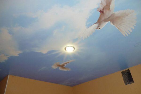 натяжной потолок с голубями фото