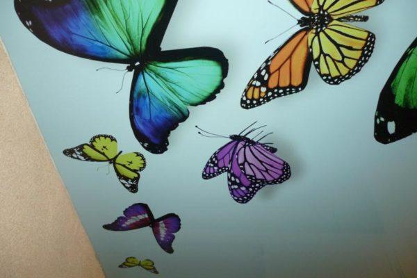 натяжной потолок с бабочками фото