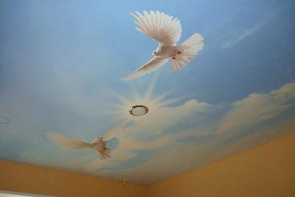 натяжной потолок с птицами